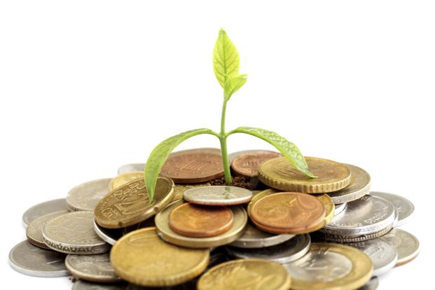 A Salaried Person Wants To Invest More But Still Confused, Invest In These Schemes