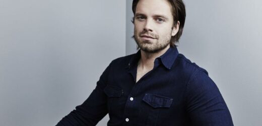 Sebastian Stan Net Worth 2019